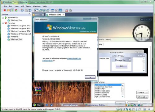 I've been successful on installing custom styles on a Vista guest. I