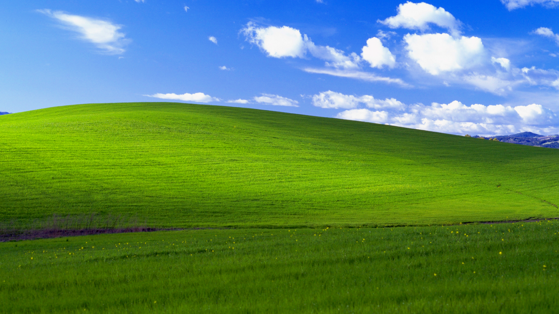 Windows xp bliss background recreated in minecraft for Window background