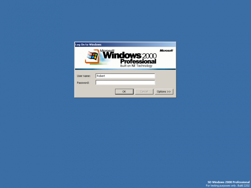 File:Windows 2000 Professional 2202-2019-01-11-17-51-54.png