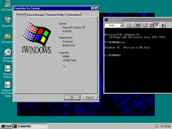 Windows95build263.png